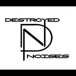 DeStRoyEd NoiSes