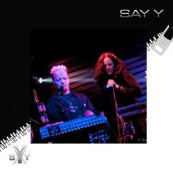 Say Y
