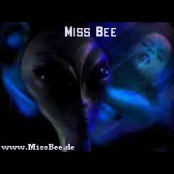Miss Bee