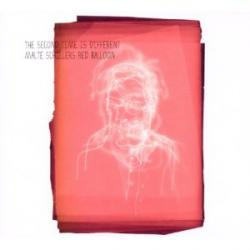 "Cover der CD ""The Second Time Is Different""; der Band ""Malte Schillers Red Ballon"""