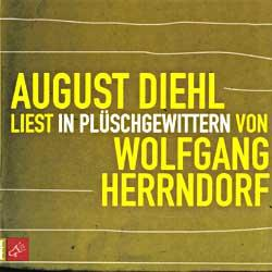 """Cover der CD """"In Plüschgewittern""""; der Band """"Wolfgang Herrndorf"""""""